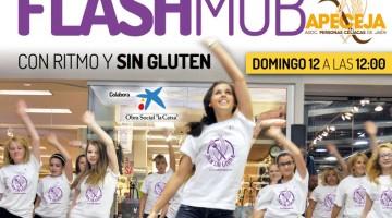 flashmob_apeceja
