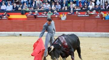 Enrique Ponce durante uno de los festejos taurinos en beneficio de la Asociación Española contra el Cáncer. FOTO: HORAJAÉN