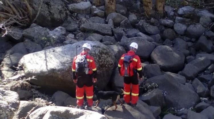 Unidad canina en la búsqueda de un hombre desaparecido en Andújar, el año pasado.