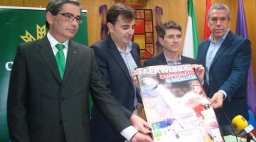Campeonato Andalucia Taekwondo
