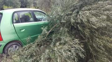 Imagen del vehículo tras salirse de la carretera. FOTO: Bomberos de Jaén