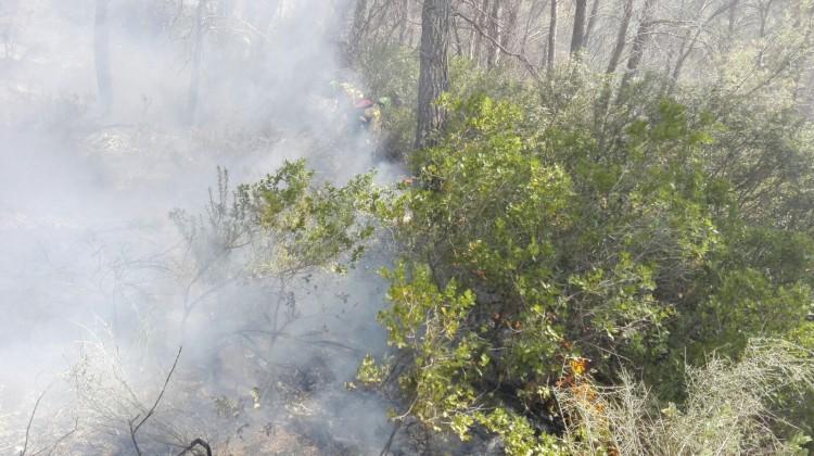 Imagen del incendio del pinar de ayer en Banatae. FOTO: INFOCA.