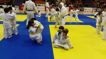 05-31.- Judo base archivo