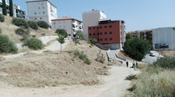 Limpieza ladera de San Ramon